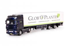 Plantes, Globo
