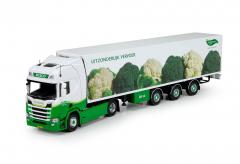 Greenery broccoli en spruiten