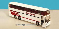 Euro coach
